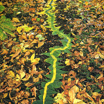 Photograph of Natural leaves construction by Andy Goldsworthy